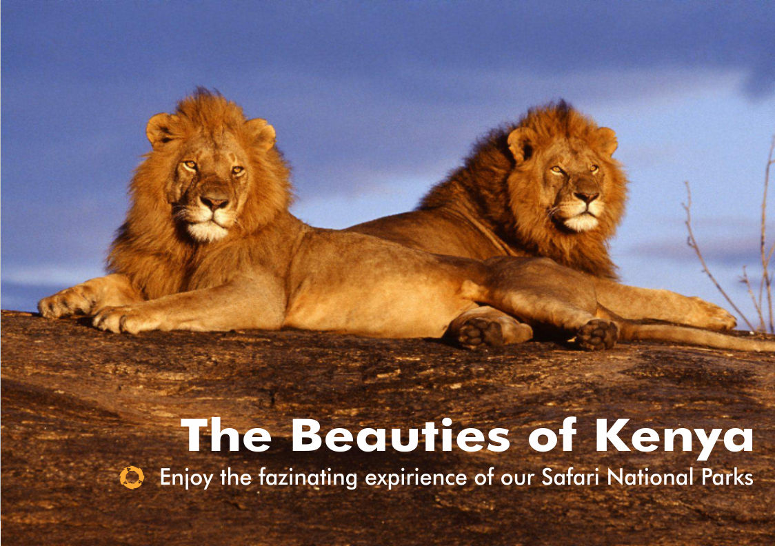 Beauties-of-Kenya-National Parks-1