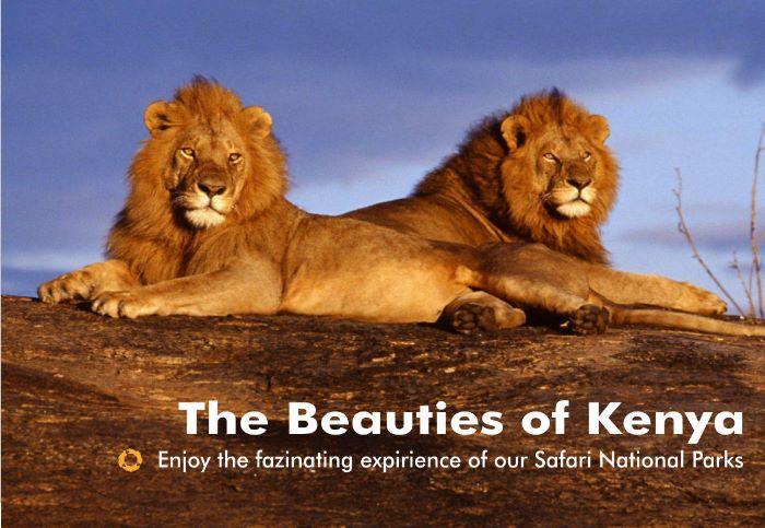 Beauties of Kenya – National Parks