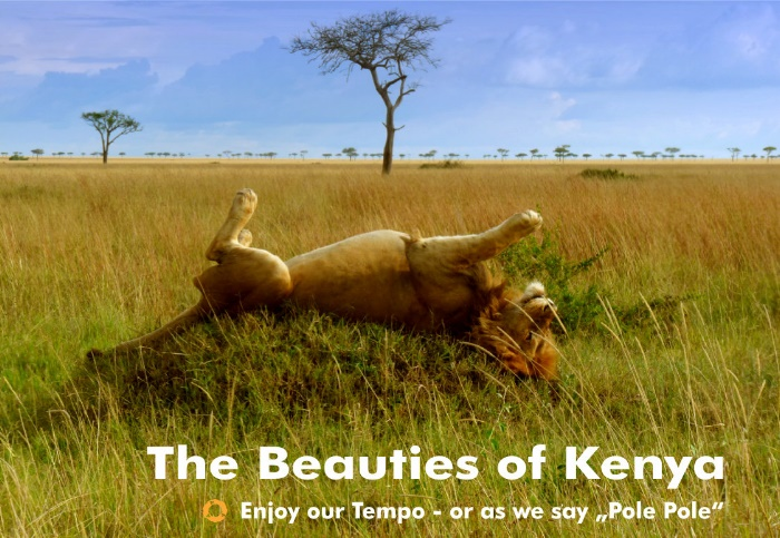 Beauties of Kenya – Pole Pole