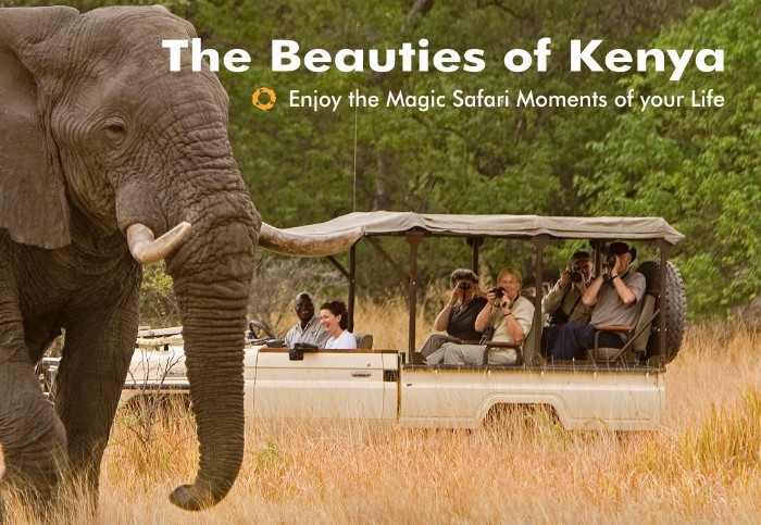 Beauties of Kenya – Safari Moments
