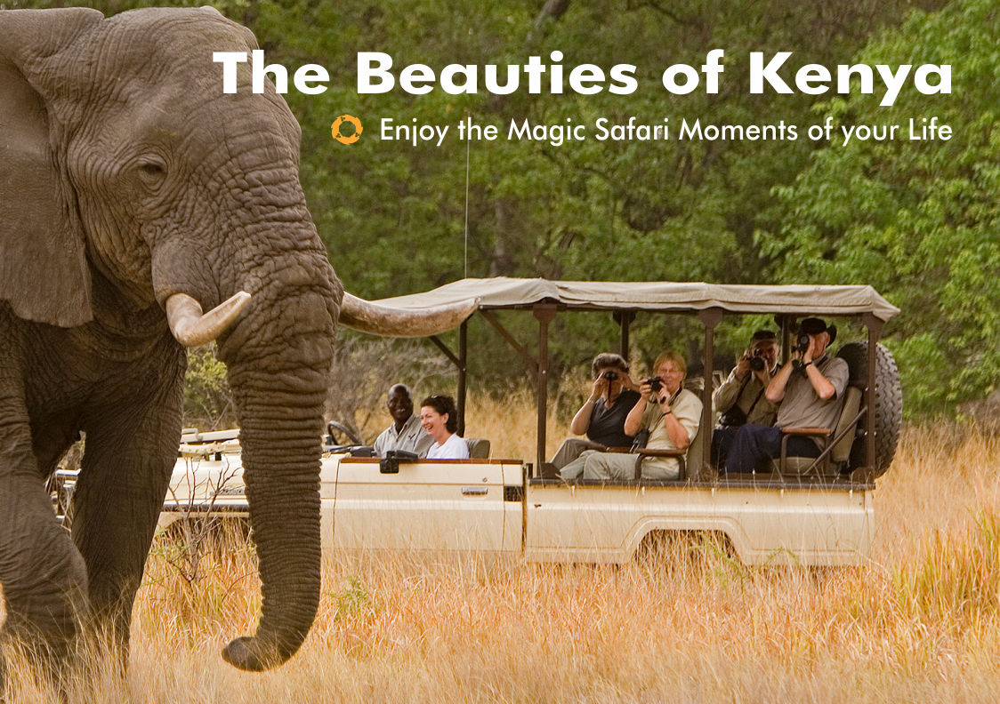 Beauties-of-Kenya-Safari-Moments