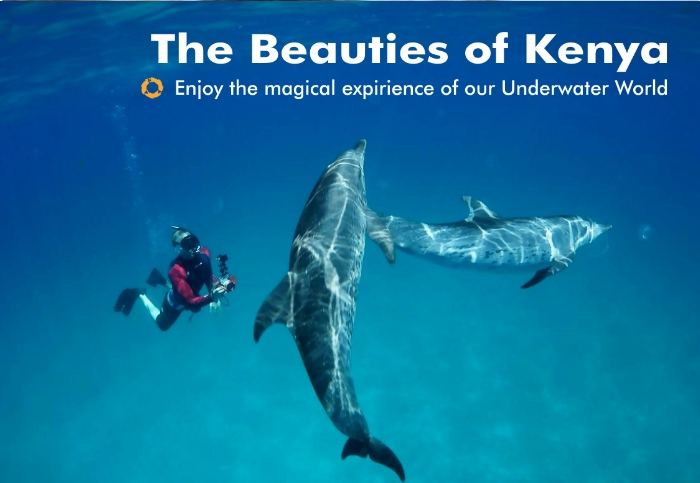 Beauties of Kenya – Underwater World