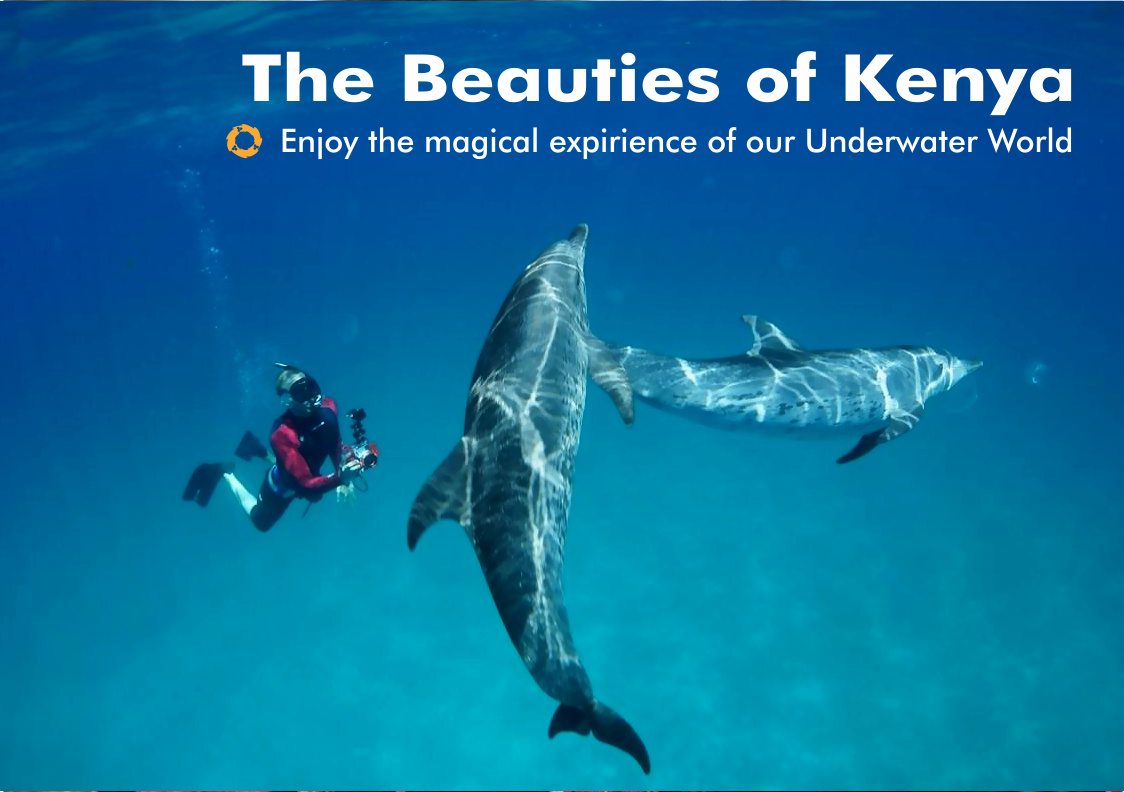 Beauties-of-Kenya-Underwater-World